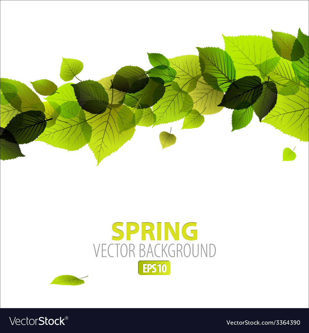 Spring abstract floral background vector | Price: 1 Credit (USD $1)