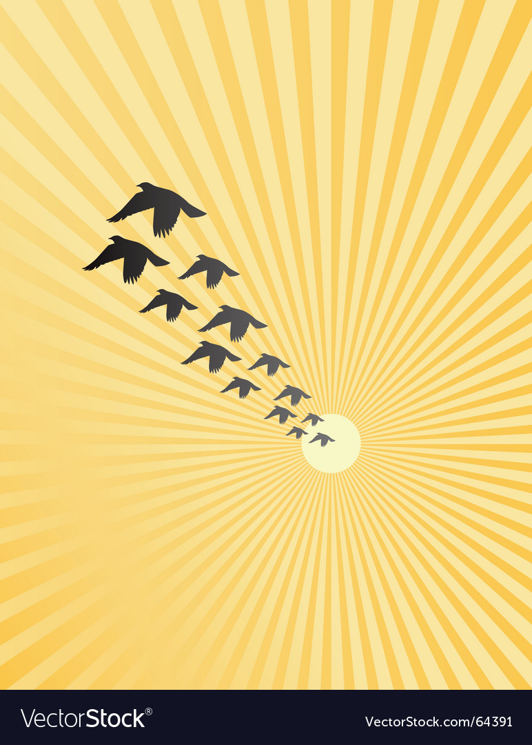 Burst birds vector | Price: 1 Credit (USD $1)
