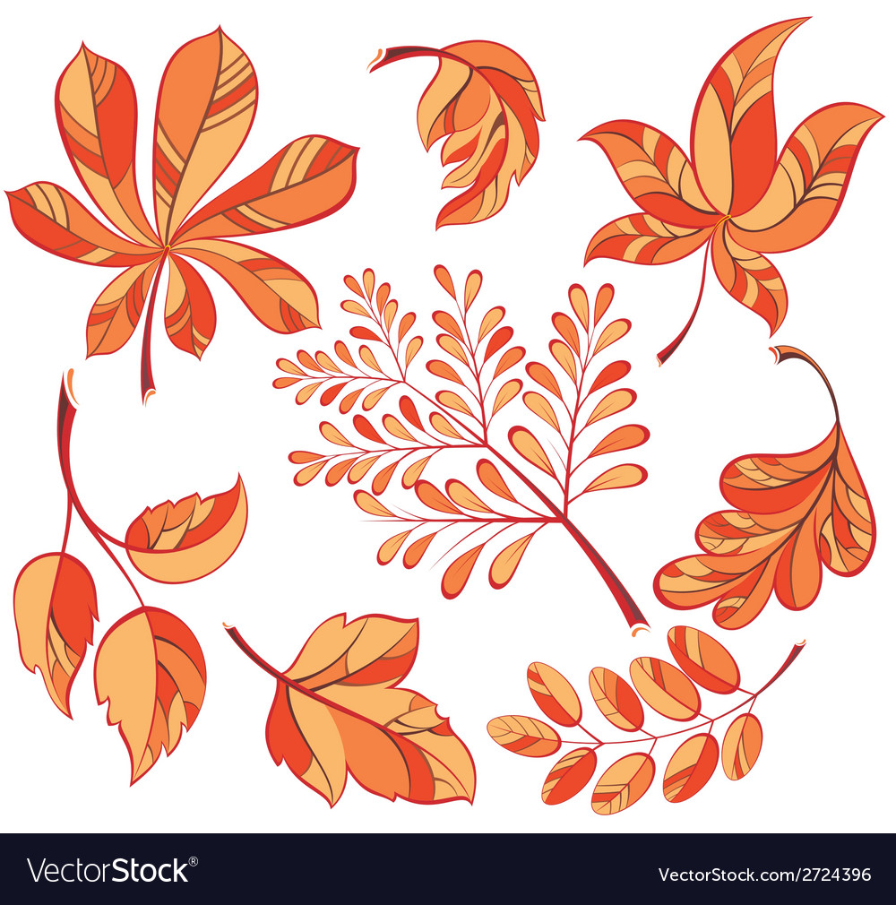 Collection beautiful colourful autumn leaves vector | Price: 1 Credit (USD $1)