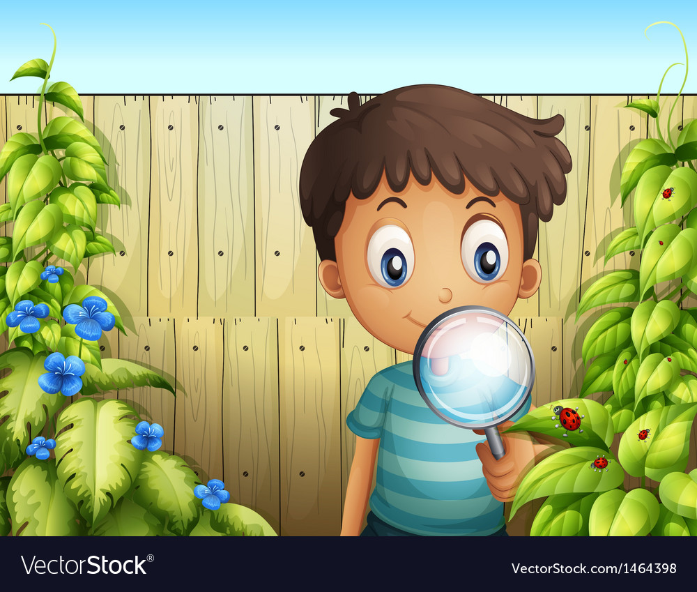 A boy holding a magnifying glass to see the bugs vector | Price: 1 Credit (USD $1)