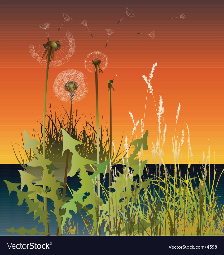 Grasses vector | Price: 3 Credit (USD $3)