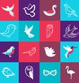 Set of bird logos vector