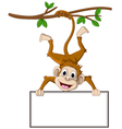 Monkey cartoon holding blank sign vector