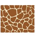 Giraffe skin pattern vector