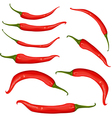 Red chili pepper vector