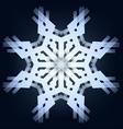 Shining snowflake vector