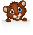 Cute baby brown bear cartoon posing with blank sig vector