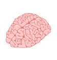 Pink brain vertical view vector