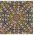 Ornamental round geometric native style pattern vector