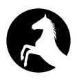 Rearing up horse silhouette vector