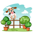 Dog jumping over the fence vector