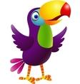 Toucan cartoon vector