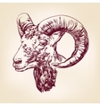 Goat hand drawn llustration realistic sketch vector