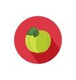 Apple icon vector