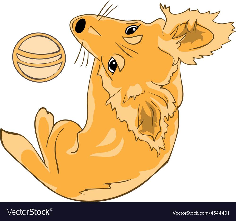 Pretty red haired dog with a ball color version vector | Price: 1 Credit (USD $1)