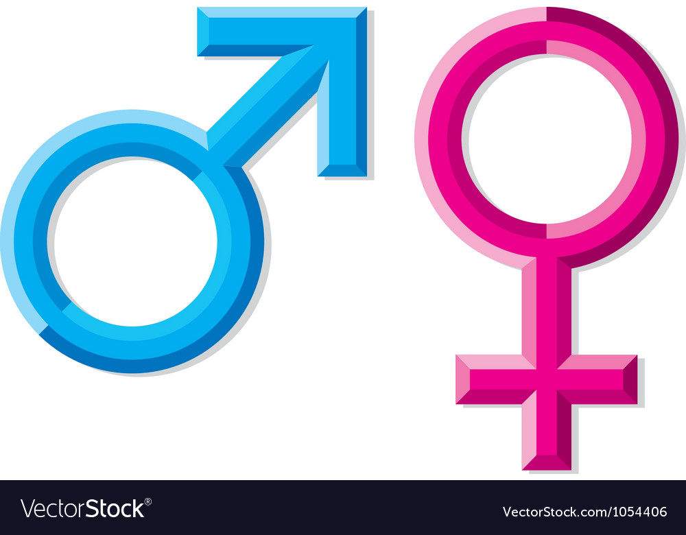 Male and female gender symbols vector | Price: 1 Credit (USD $1)