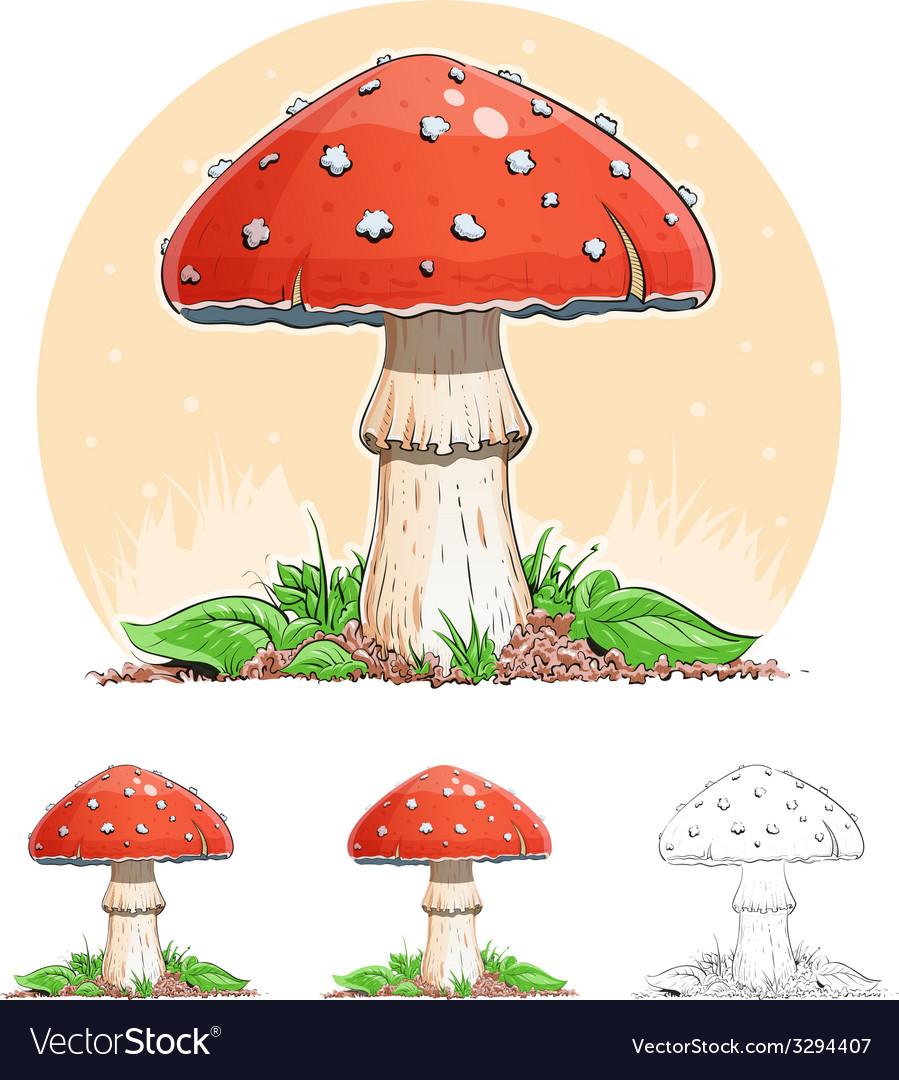 Amanita mushroom vector | Price: 3 Credit (USD $3)