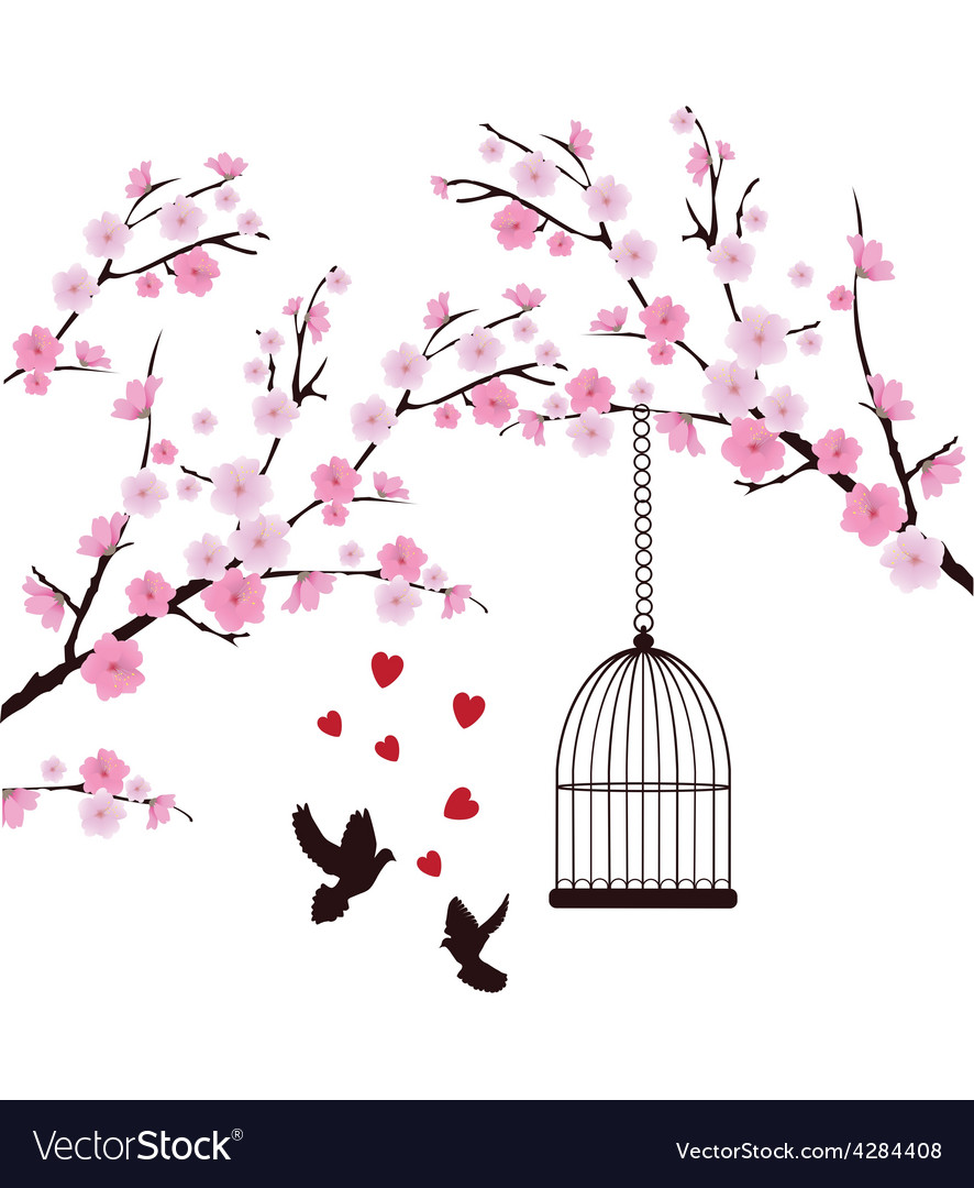 Dove love cage vector