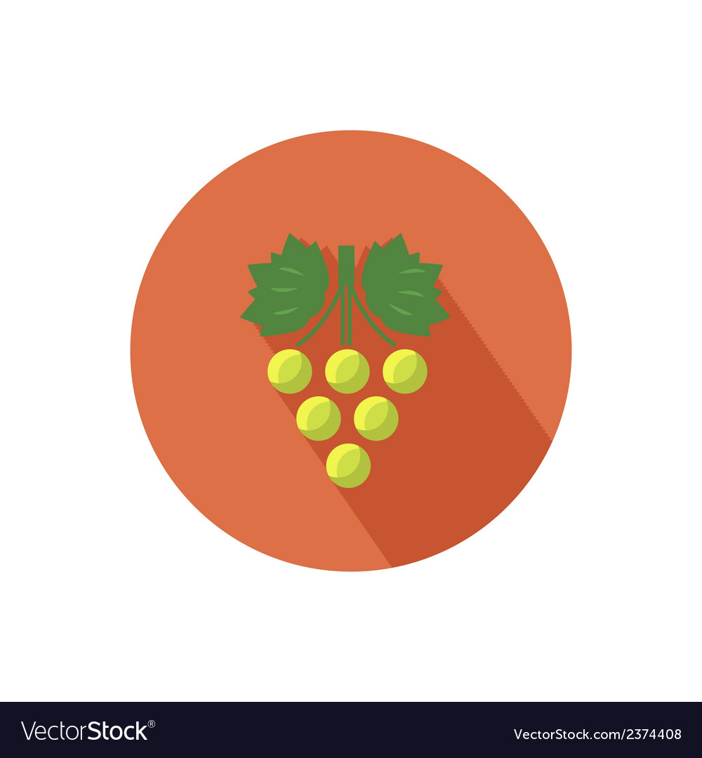 Grapes icon vector | Price: 1 Credit (USD $1)
