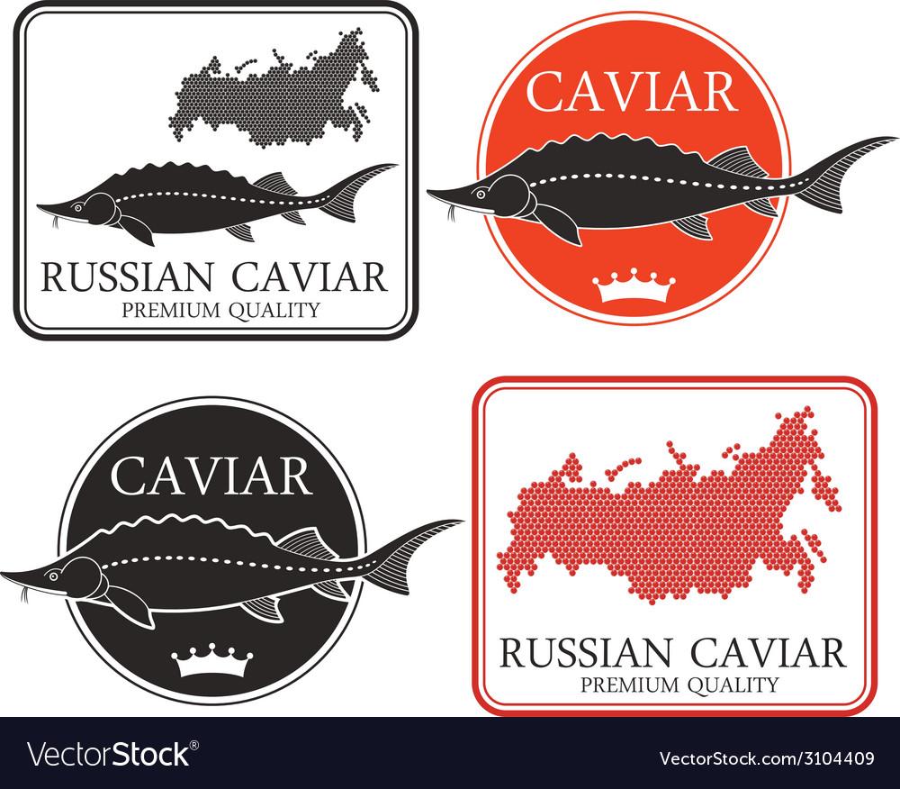 Caviar vector | Price: 1 Credit (USD $1)