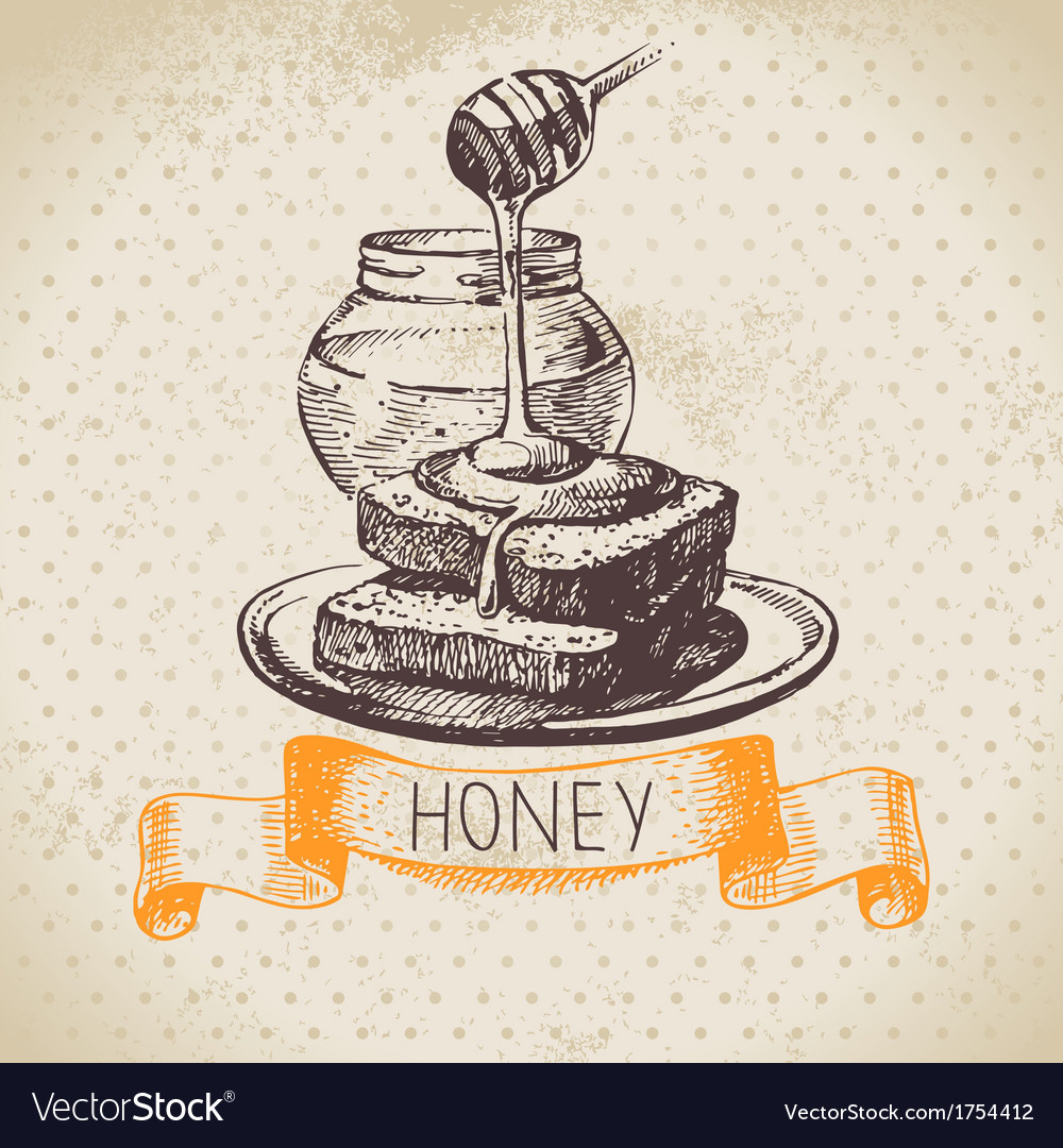 Hand drawn sketch honey background with vector | Price: 1 Credit (USD $1)