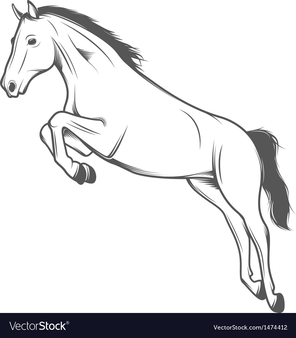Jumping horse isolated on white background vector   Price: 1 Credit (USD $1)
