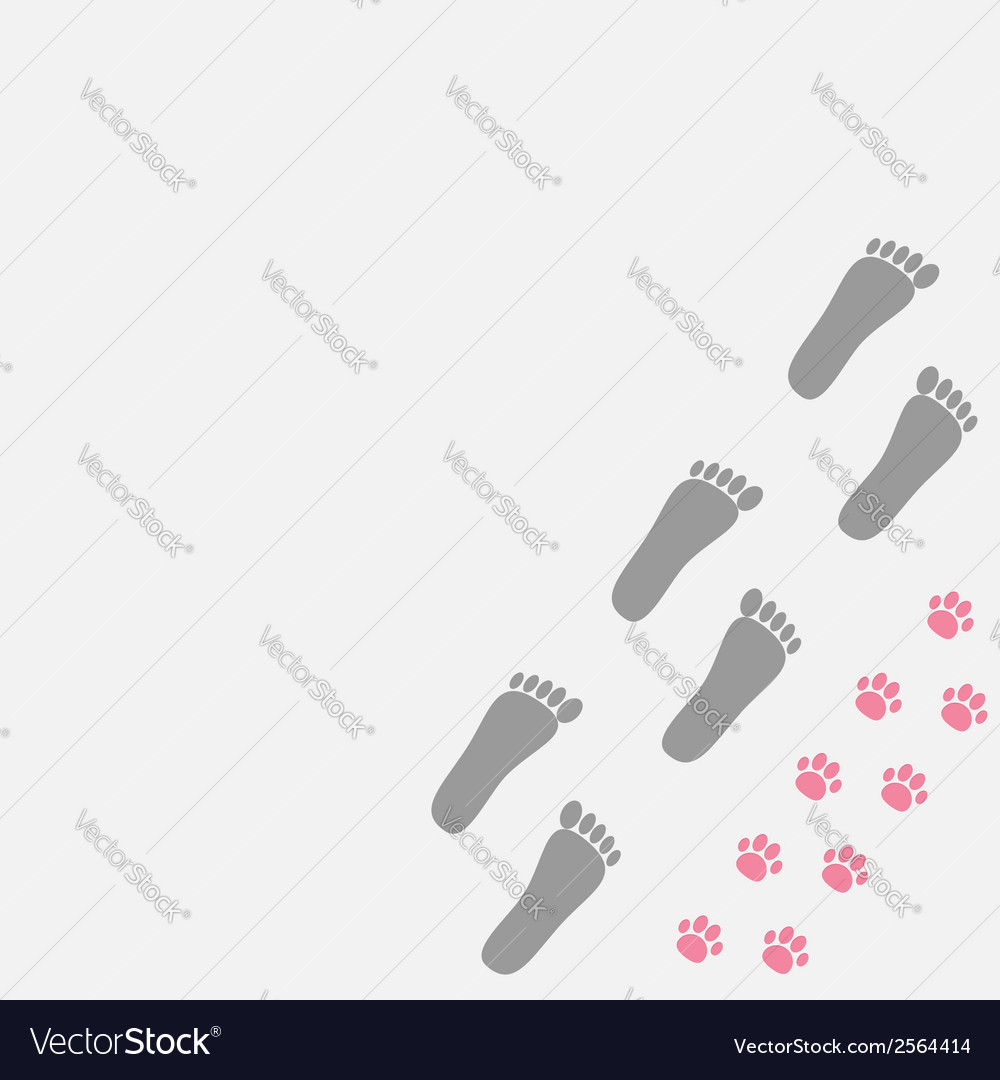 Grey bare foot print and pink paw print in the vector | Price: 1 Credit (USD $1)