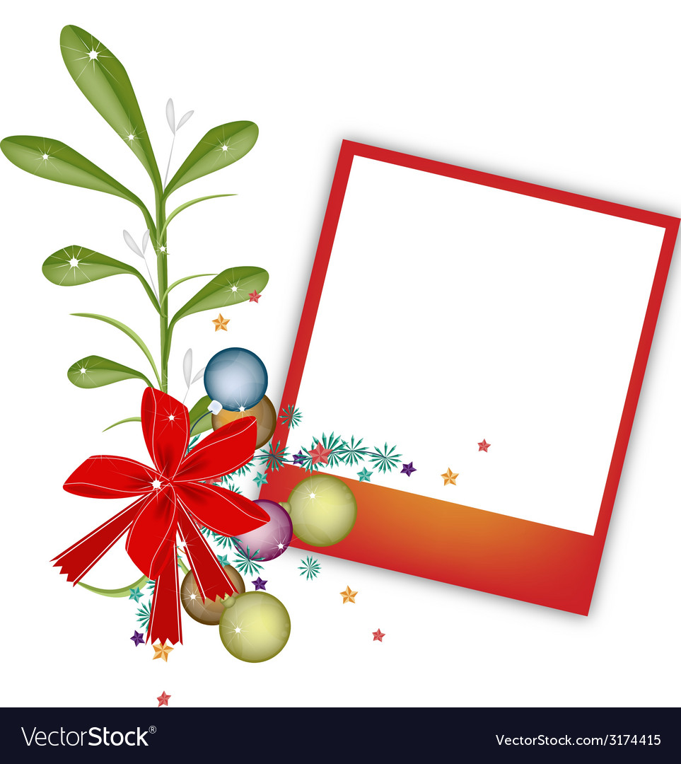 A red blank photos with mistletoe bunch vector | Price: 1 Credit (USD $1)