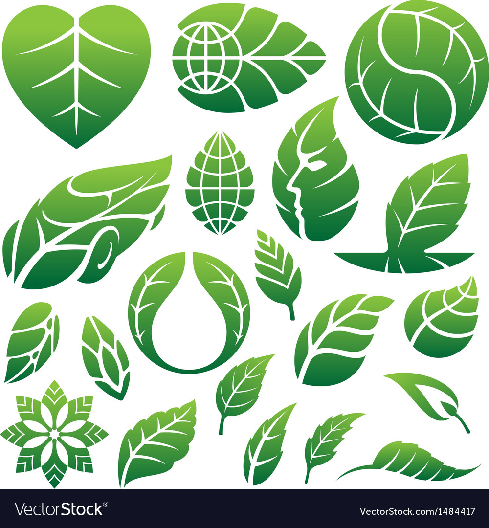 Green leaf icon set vector | Price: 1 Credit (USD $1)