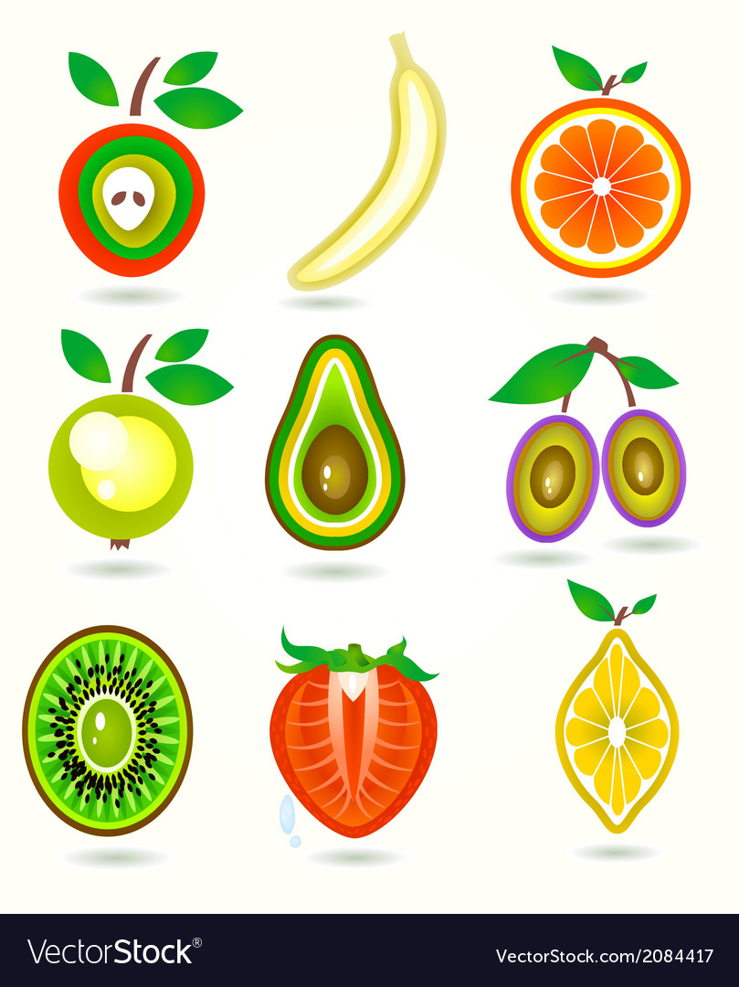Stylized cut fruits vector | Price: 1 Credit (USD $1)