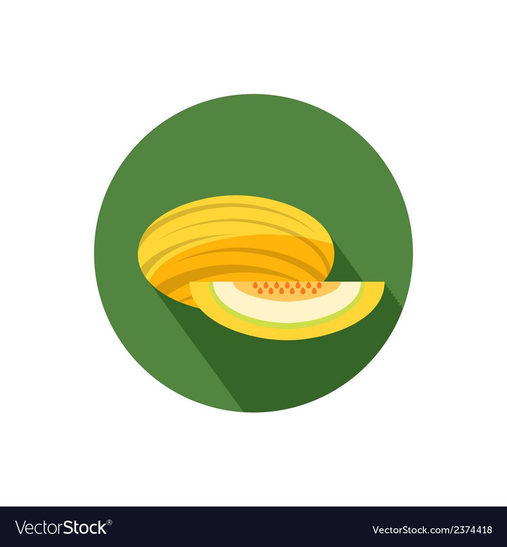Melon icon vector | Price: 1 Credit (USD $1)