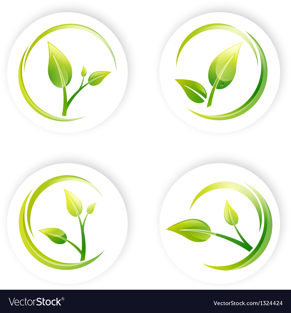 Green sprout leaf vector | Price: 1 Credit (USD $1)
