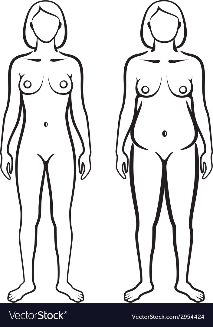 Set of female body types vector | Price: 1 Credit (USD $1)