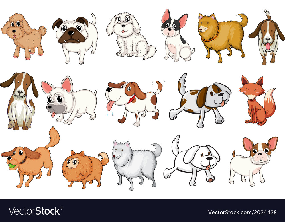 Different breeds of dogs vector | Price: 3 Credit (USD $3)