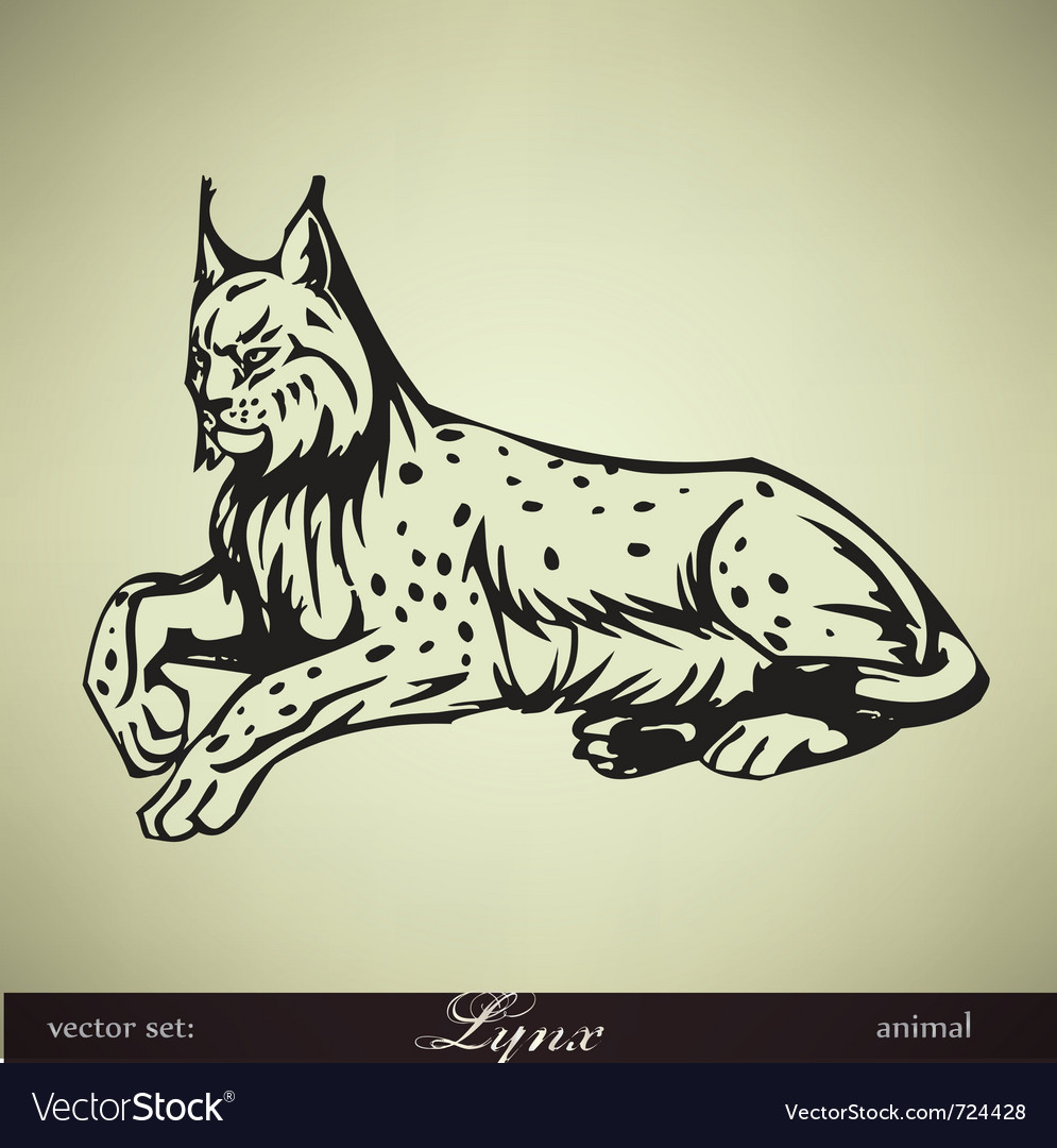 Lying lynx vector | Price: 1 Credit (USD $1)