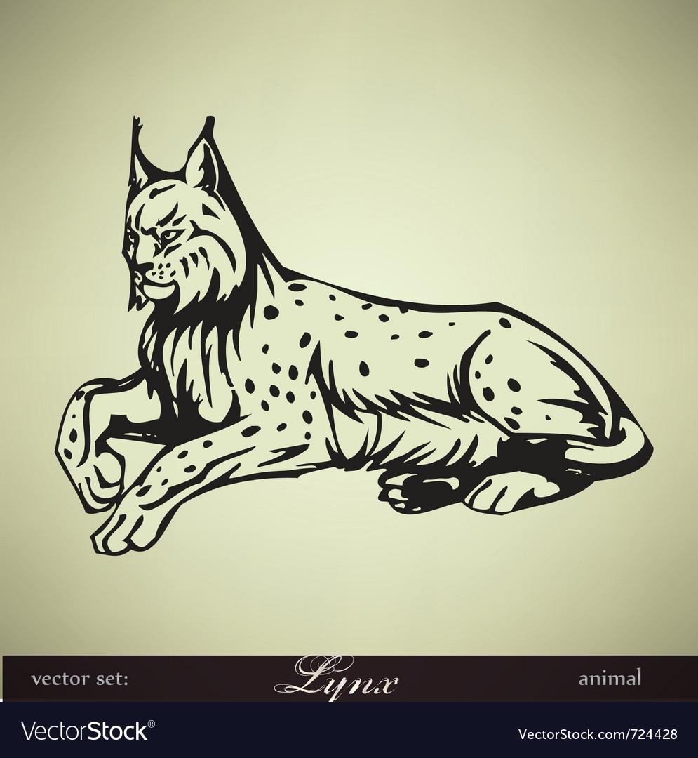 Lying lynx vector | Price: 1 Credit (USD $1)