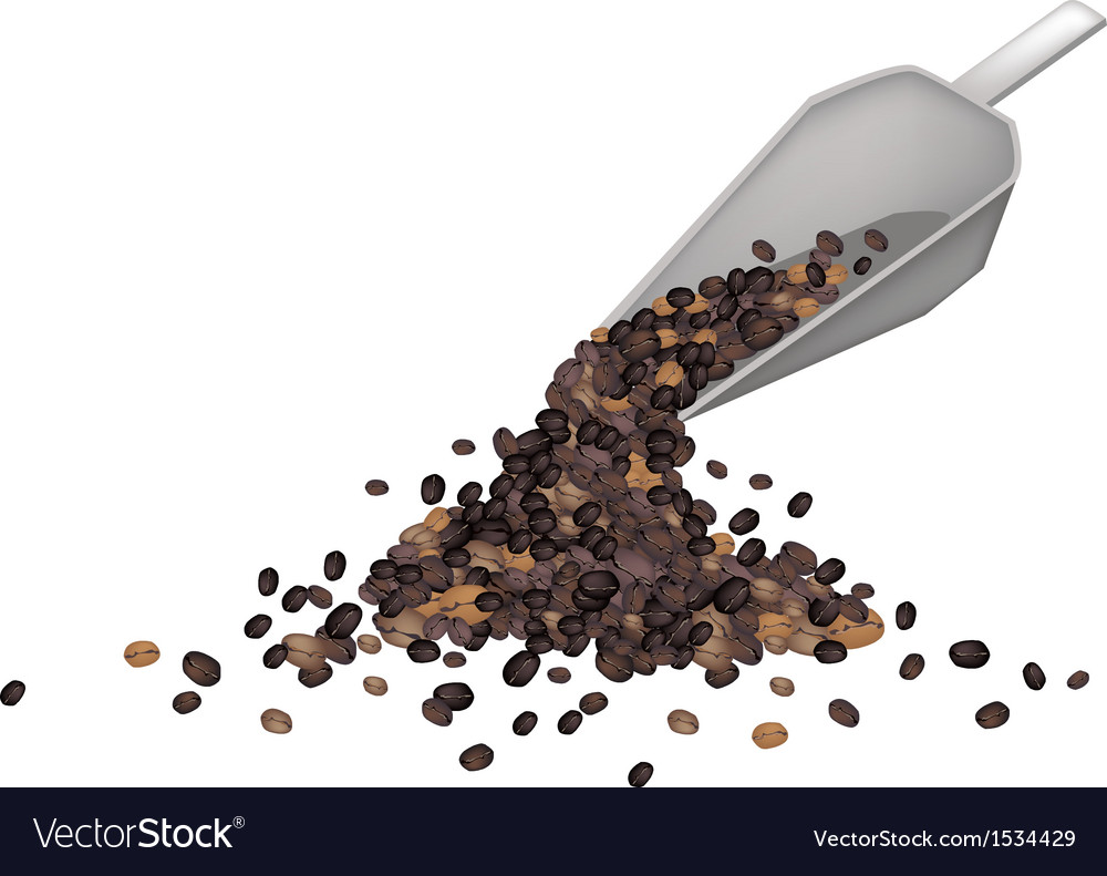 A metal shovel with roasted coffee beans vector | Price: 1 Credit (USD $1)