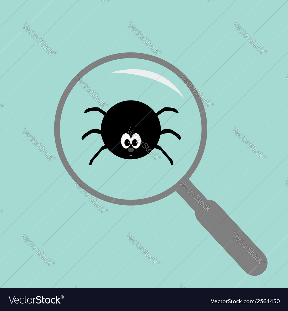 Spider insect under magnifier zoom lense flat vector | Price: 1 Credit (USD $1)