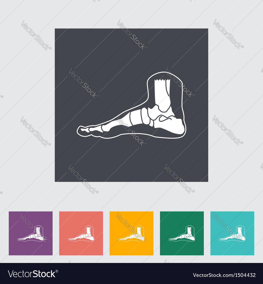 Foot vector | Price: 1 Credit (USD $1)