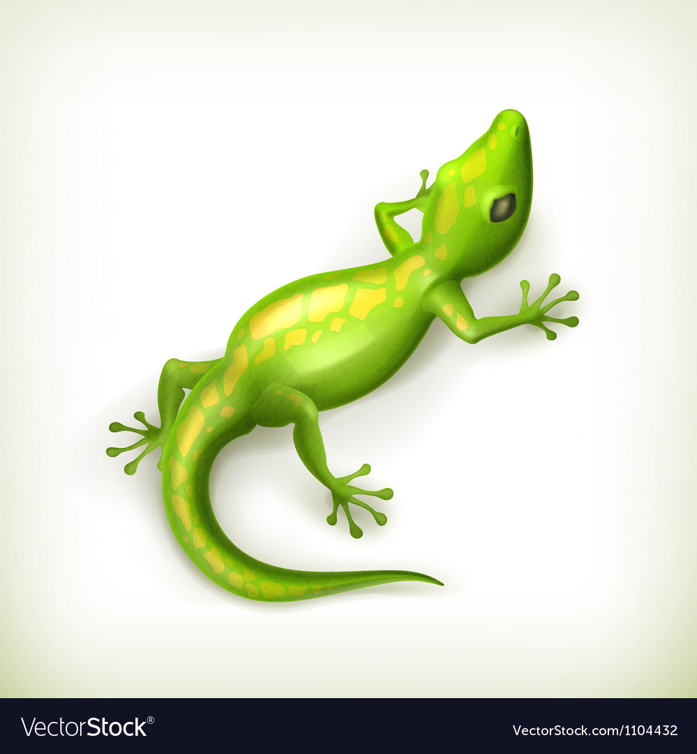 Reptile vector | Price: 1 Credit (USD $1)