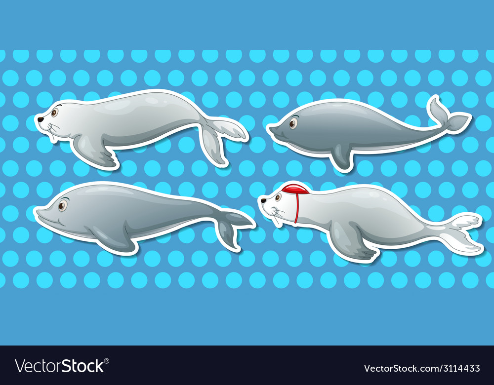 Otter and dolphin vector | Price: 1 Credit (USD $1)