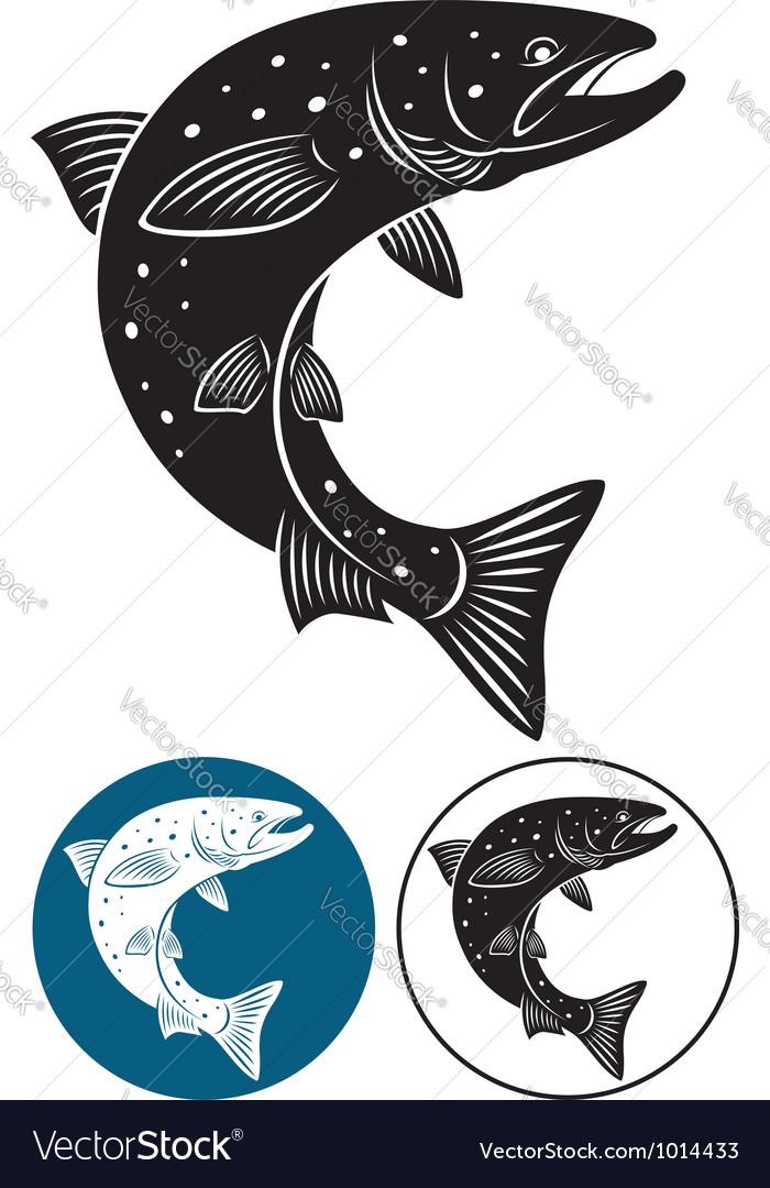 Salmon vector   Price: 1 Credit (USD $1)