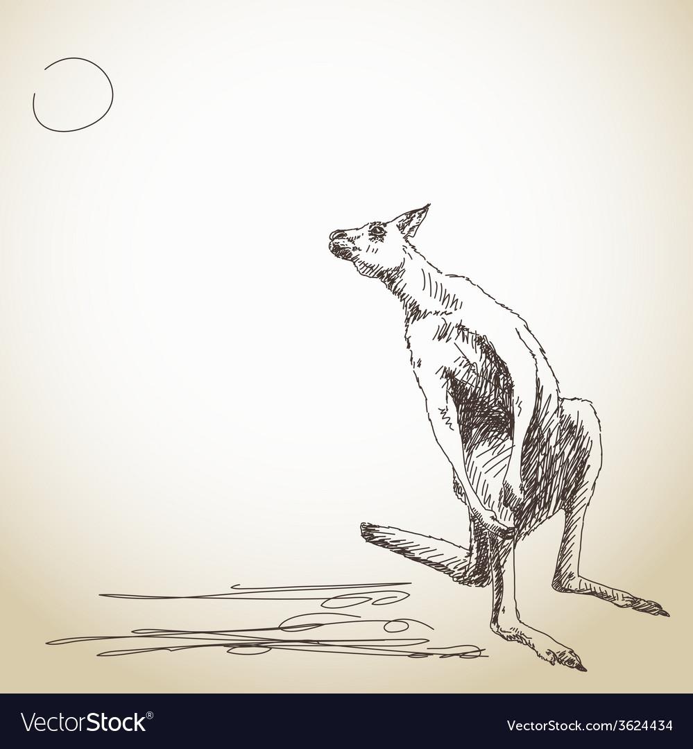 Kangaroo vector | Price: 1 Credit (USD $1)