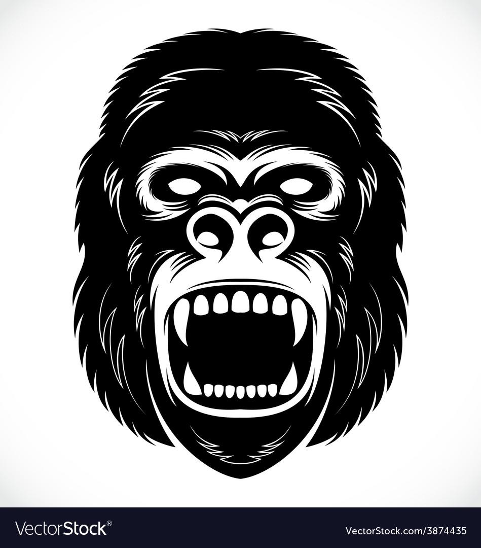 Wild gorilla head vector | Price: 1 Credit (USD $1)