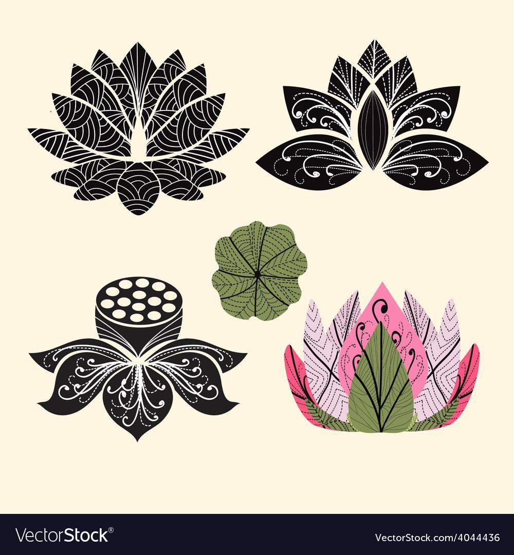 Flower lotus lotus flowers vector | Price: 1 Credit (USD $1)