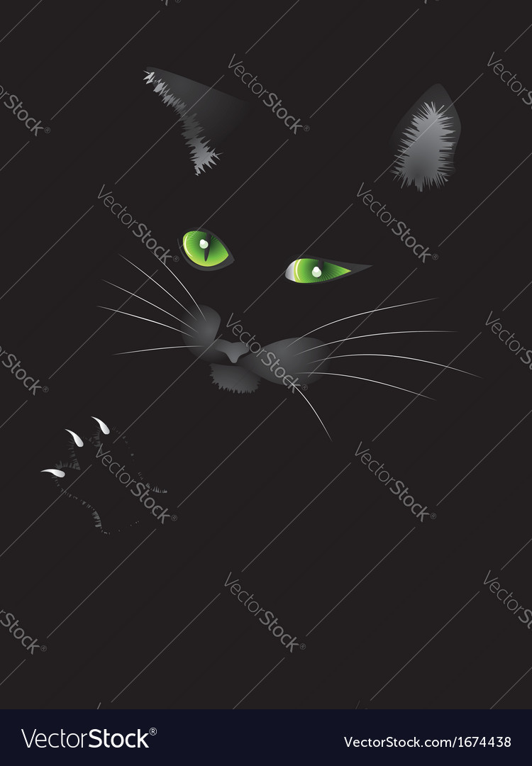 Black cat face vector | Price: 1 Credit (USD $1)
