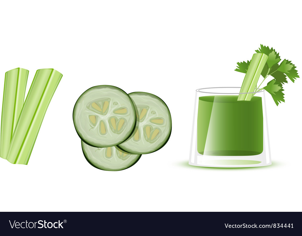 Cucumber juice vector | Price: 1 Credit (USD $1)