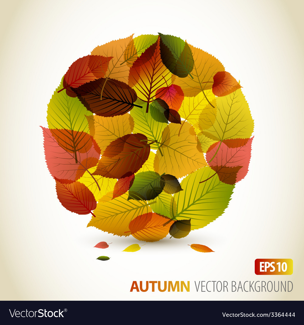 Autumn abstract floral background vector | Price: 1 Credit (USD $1)