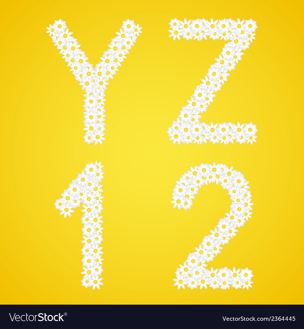 Letters yz and 12 figures composed from daisy vector | Price: 1 Credit (USD $1)