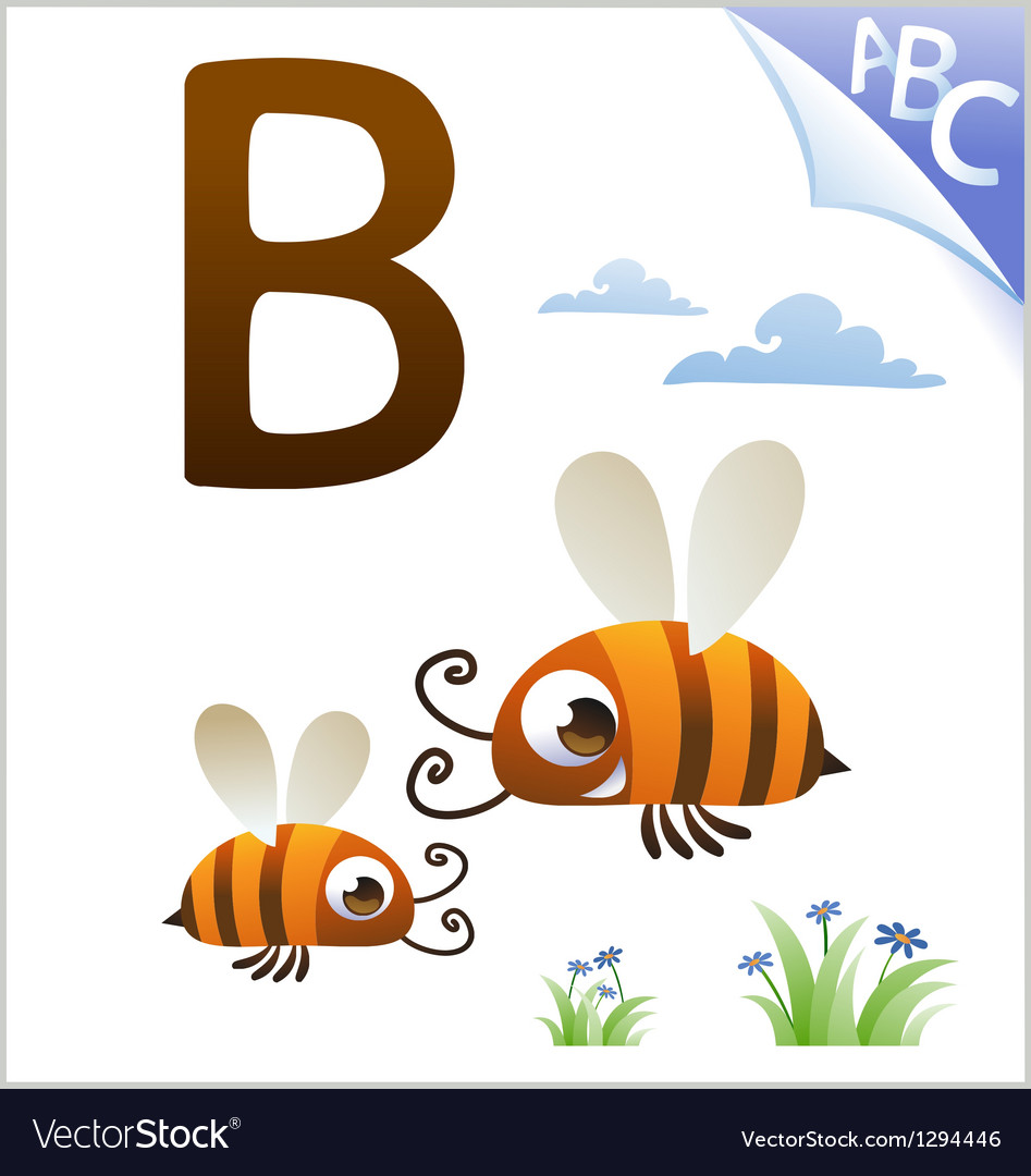 Animal alphabet for the kids b for the bee vector | Price: 1 Credit (USD $1)